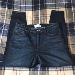 Everlane Curvy High Rise ankle length Jeans